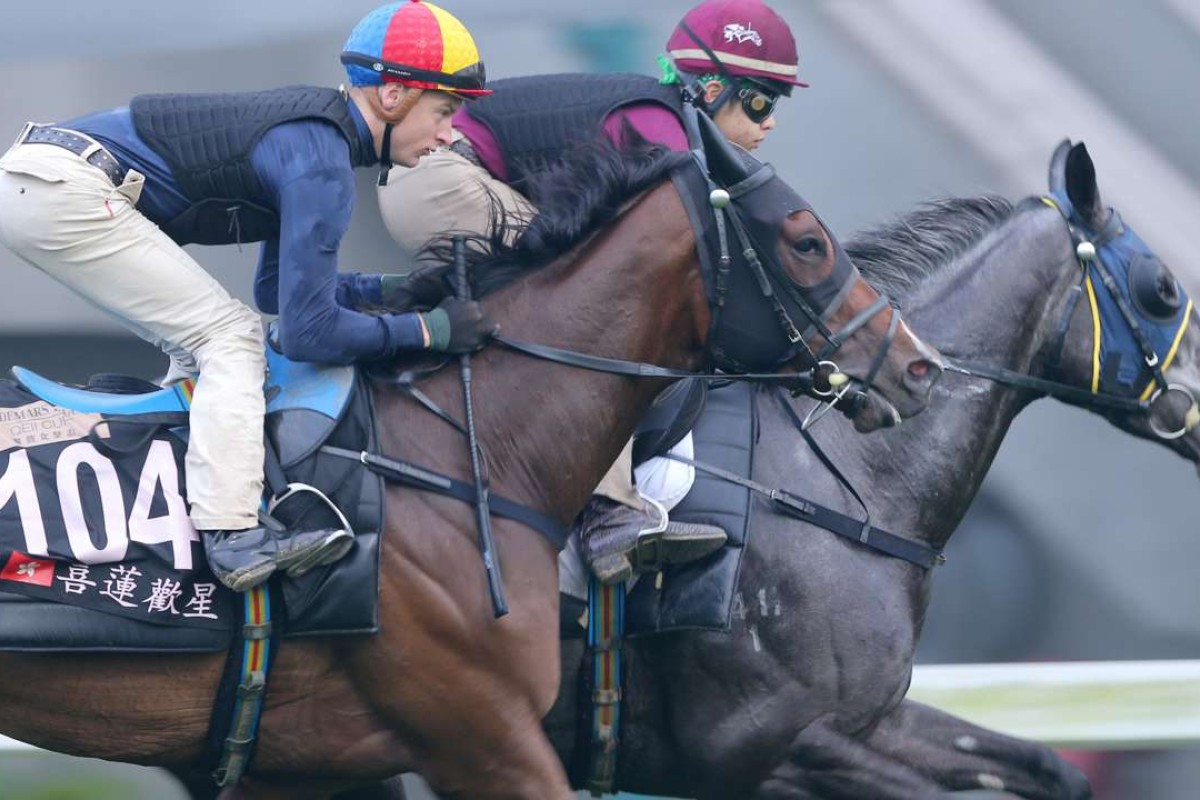 Jockey Blake Shinn rides Helene Happy Star with Basic Trilogy (inside) during a gallop on the turf at Sha Tin in April this year. Photos: Kenneth Chan