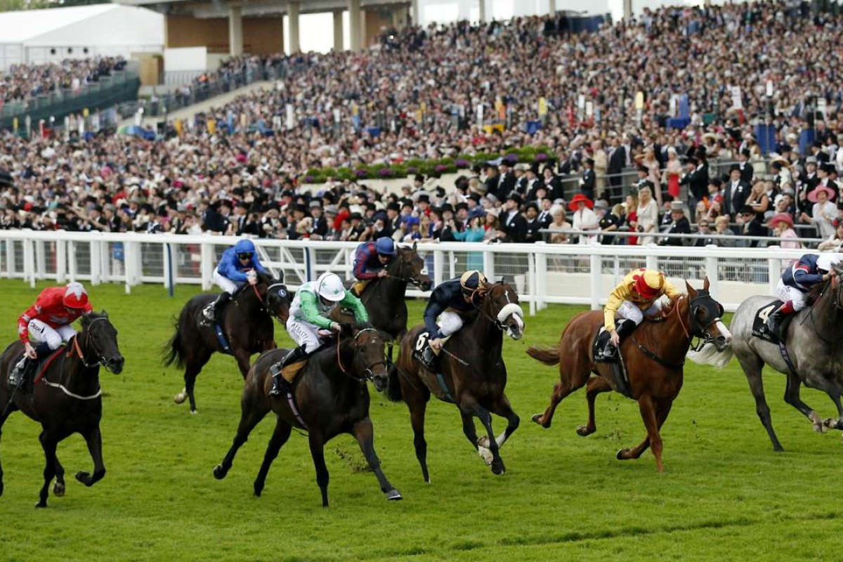 Twilight Son (green and white) bursts through to just hold off Gold-Fun (gold and red) in the Diamond Jubilee Stakes, with Signs Of Blessing splitting them in third. Photo: Reuters