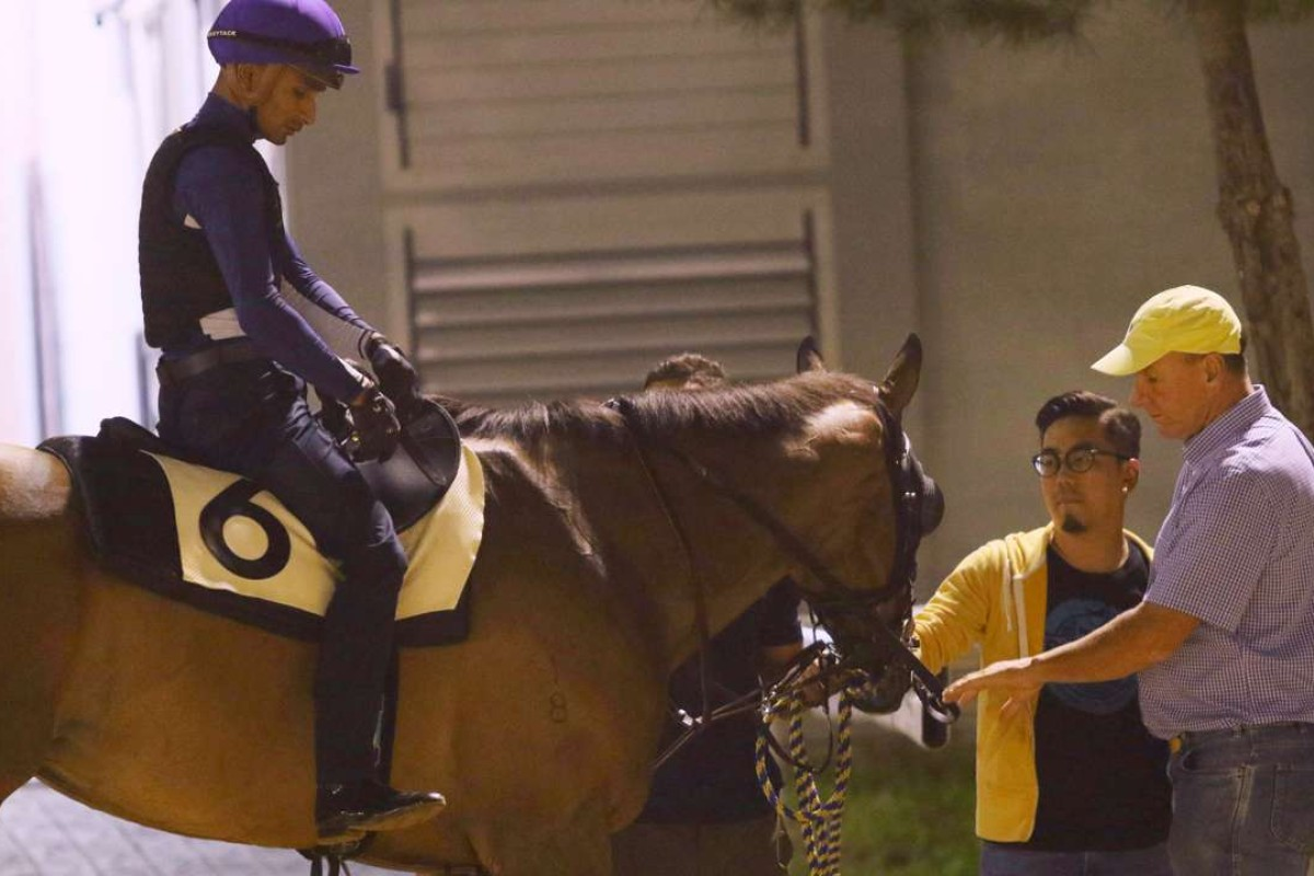 Super Jockey, with Karis Teetan aboard, returns to its stable after a gallop at Seoul Racecourse. Photo: Kenneth Chan