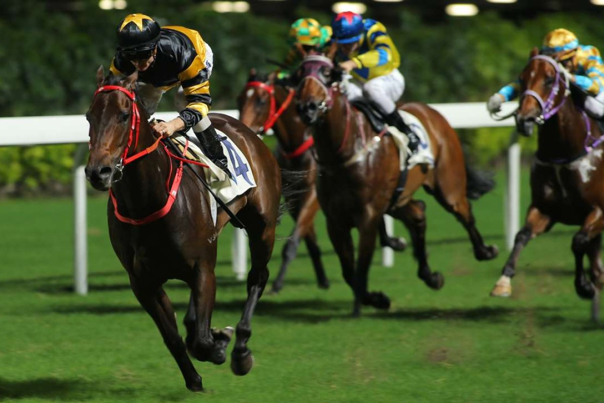 D B Pin wins the voided race at Happy Valley. Photos: Kenneth Chan