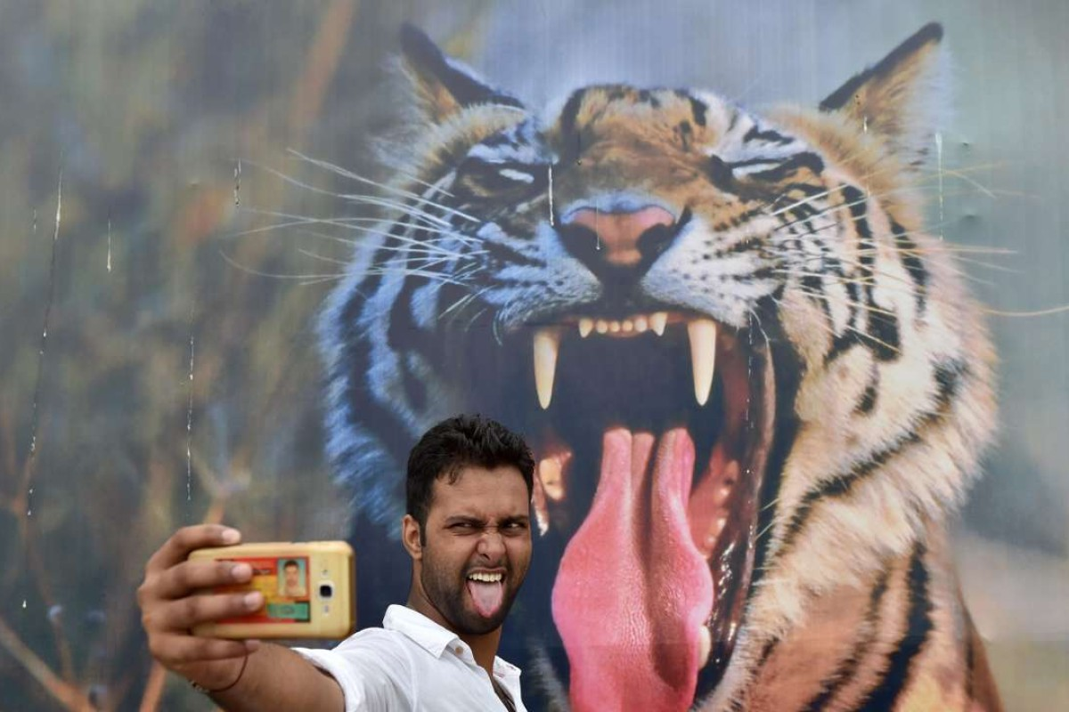 A visitor poses for a photograph in front of a picture of a tiger at the India Gate lawns in New Delhi. Photo: AFP