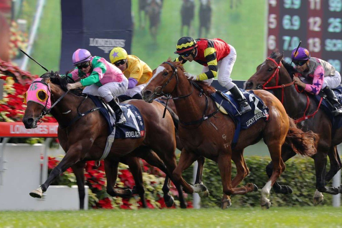 Aerovelocity wins the 2016 Hong Kong Sprint, beating Lucky Bubbles and Peniaphobia. But don't expect to see any of these horses making the trip to Australia for The Everest. Photos: Kenneth Chan