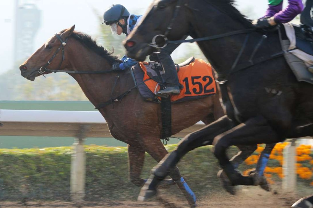 Such A Happiness (inside) trials at Sha Tin in February. Photos: Kenneth Chan
