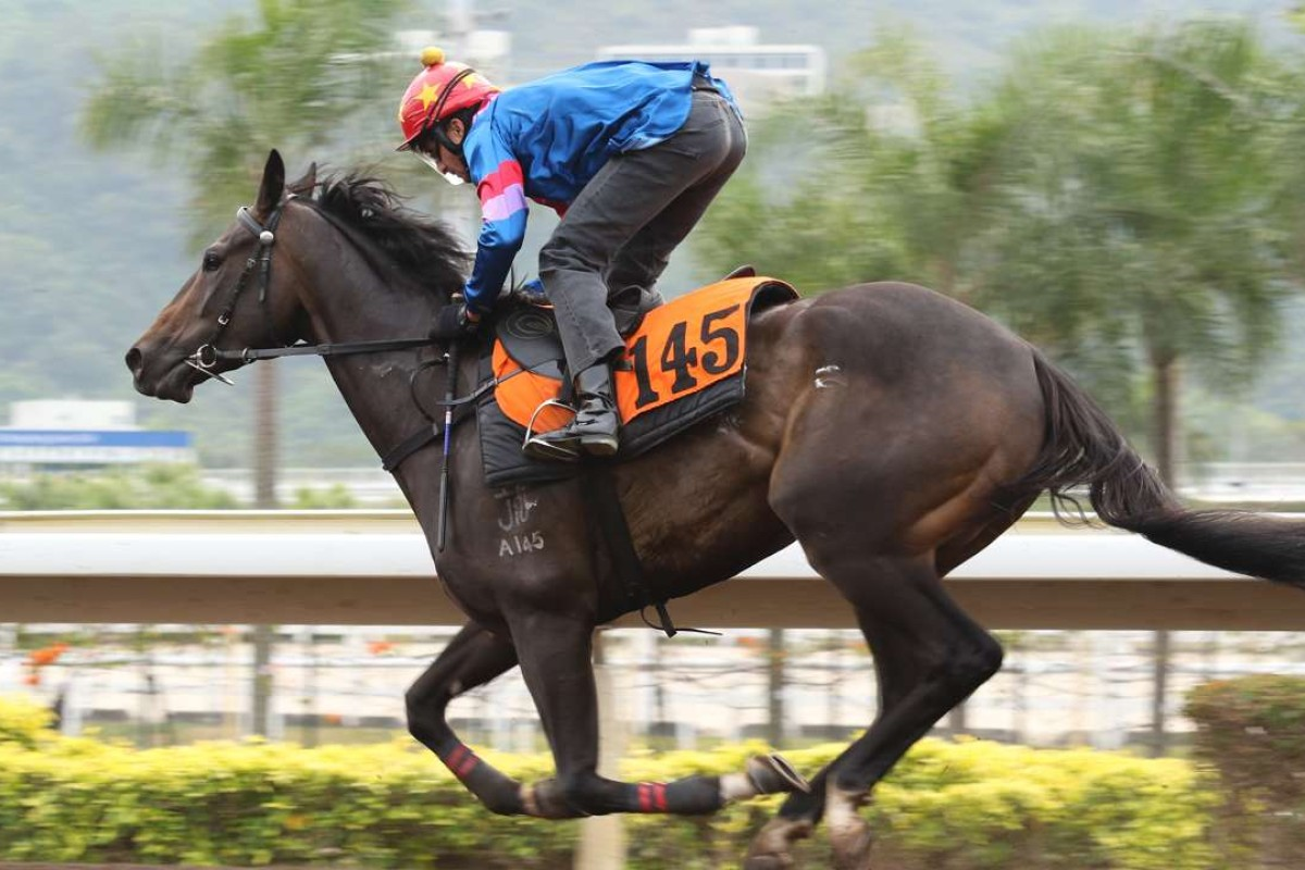 Empire Star gallops around Sha Tin in March. Photos: Kenneth Chan