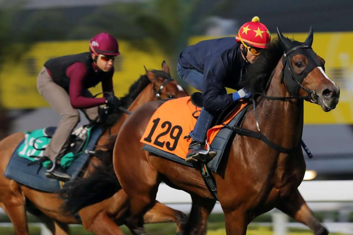 HELENE CHARISMA ridden by Douglas Whyte galloping on the turf at Sha Tin on 16Mar17.