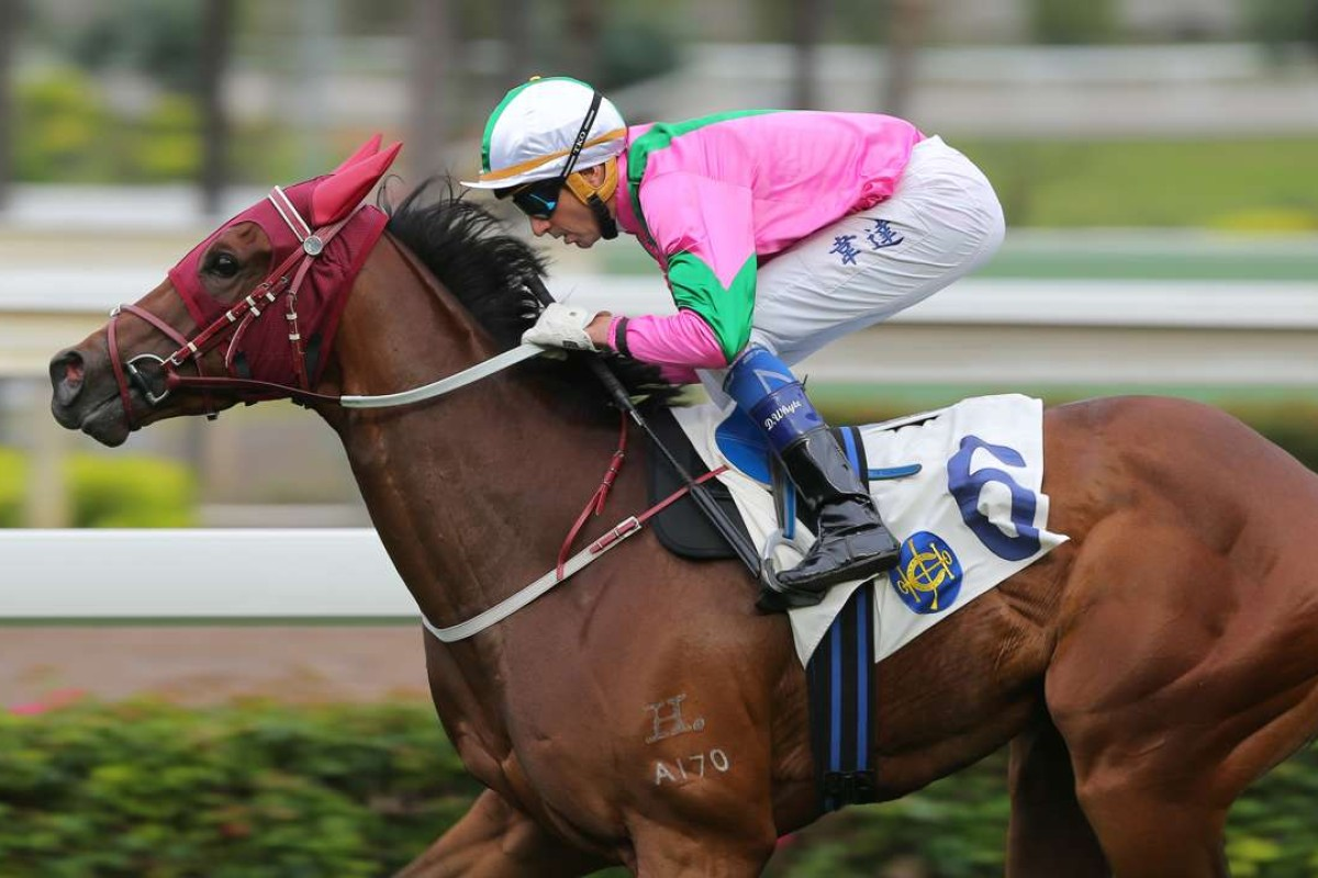 Douglas Whyte guides Magic Legend to victory at Sha Tin on Sunday. Photos: Kenneth Chan
