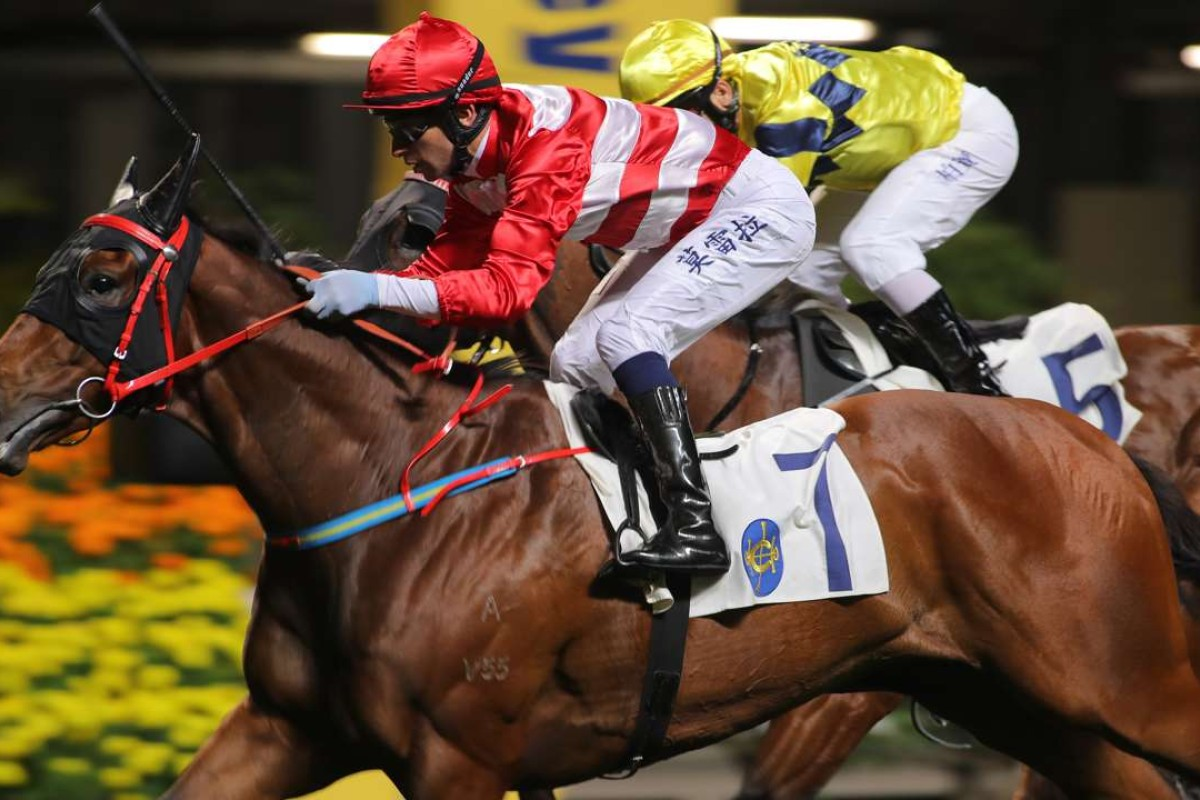 Joao Moreira guides Wayfoong Vinnie to victory at Happy Valley last start. Photos: Kenneth Chan