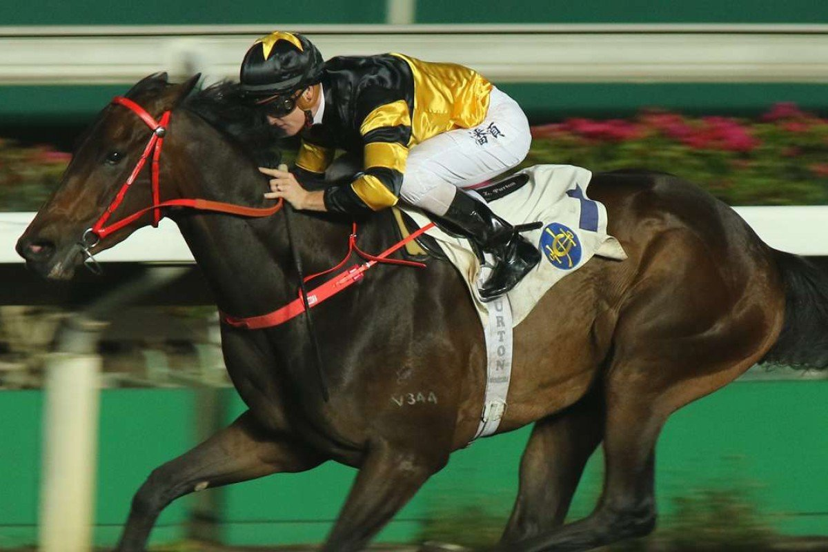 Zac Purton guides exciting sprinter D B Pin to a convincing victory at Sha Tin on Wednesday night. Photos: Kenneth Chan