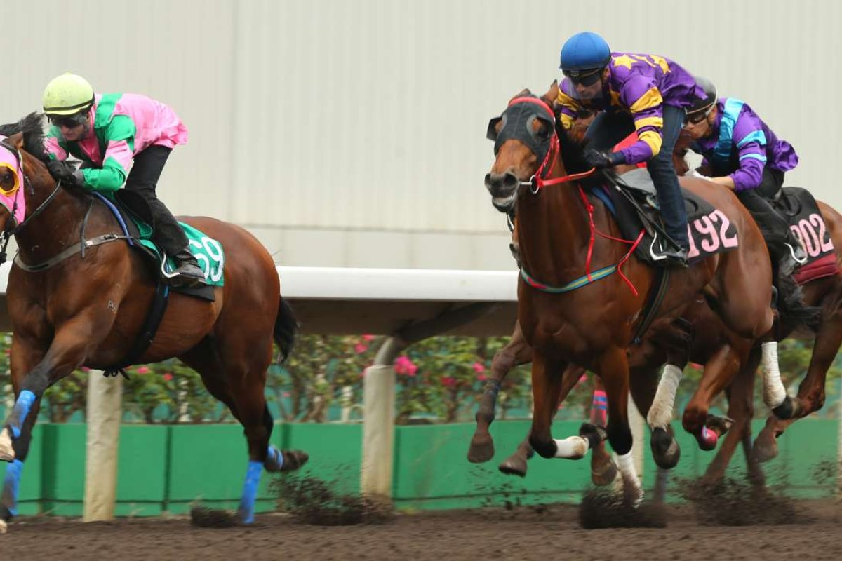 Aerovelocity beats Eastern Express in a barrier trial on Tuesday. Photo: Kenneth Chan