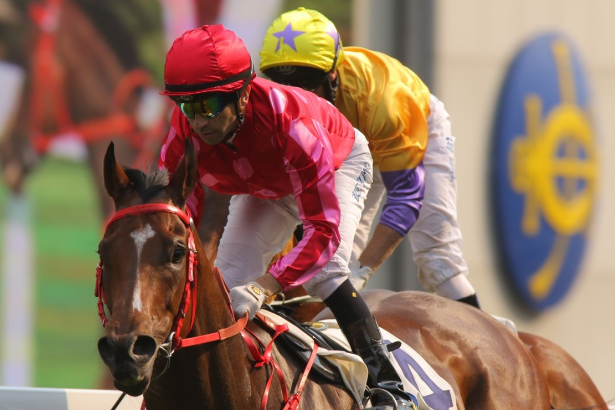 Mr Stunning wins the Group Two Sprint Cup at Sha Tin last start. Photos: Kenneth Chan
