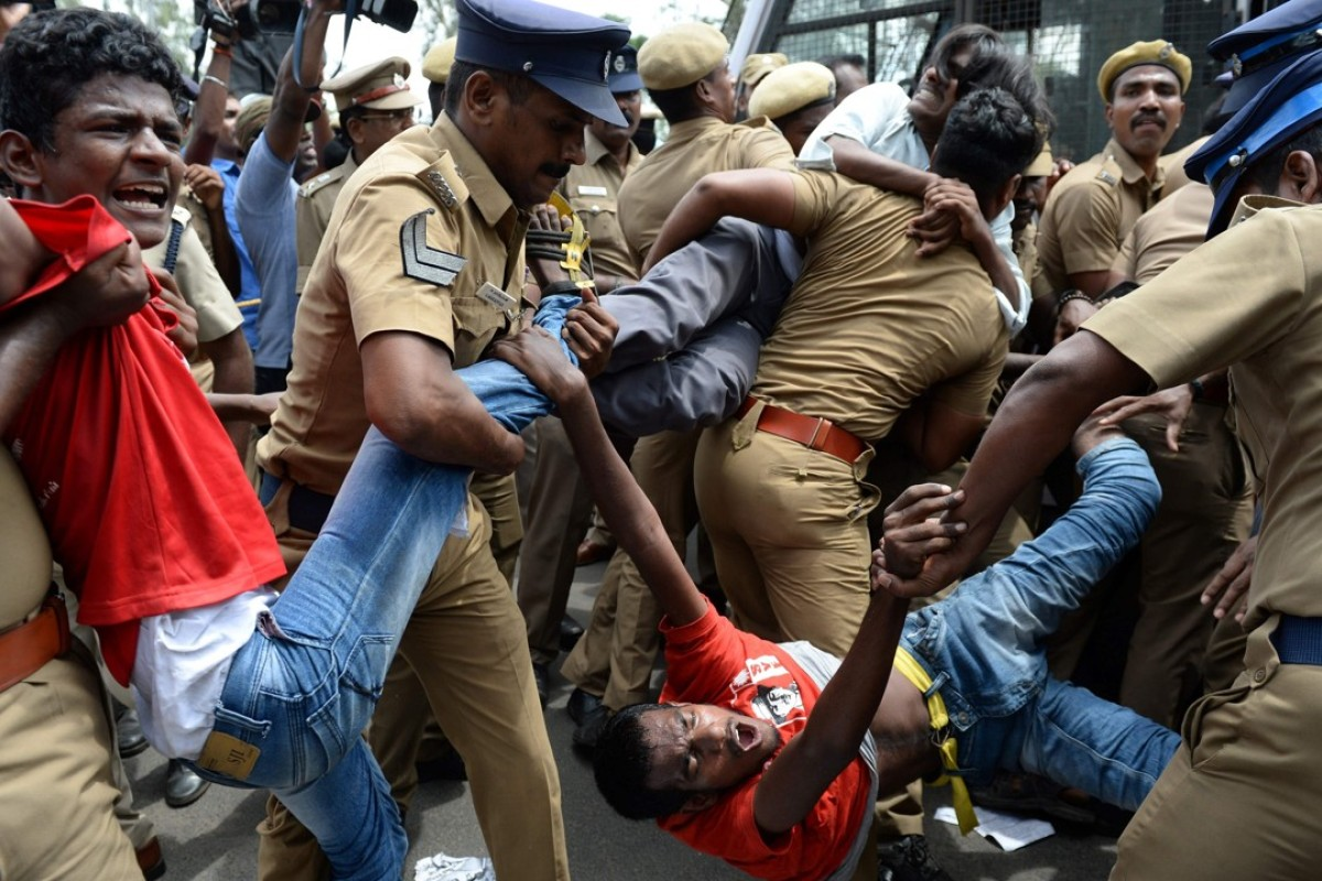 Indians protest against a ban on the sale of cows for slaughter. Photo: AFP