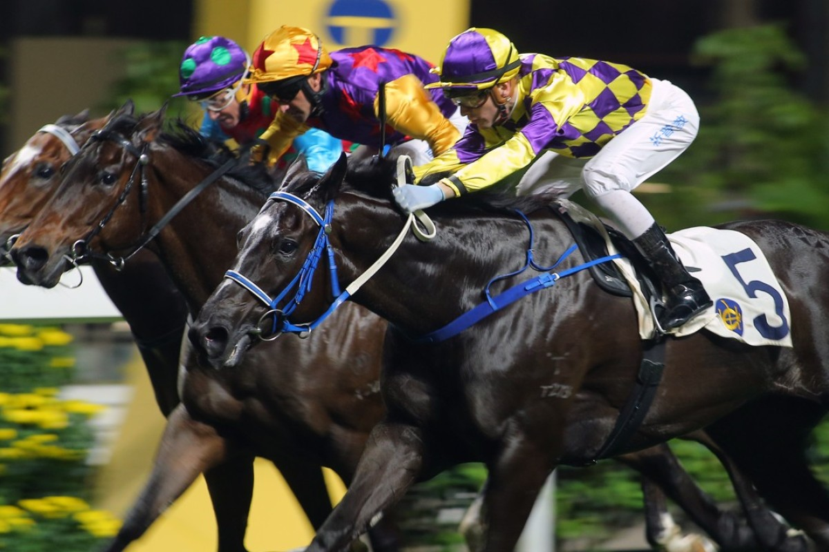 Sam Clipperton lifts Fantastic Feeling (yellow and purple) over the line last start. Photos: Kenneth Chan