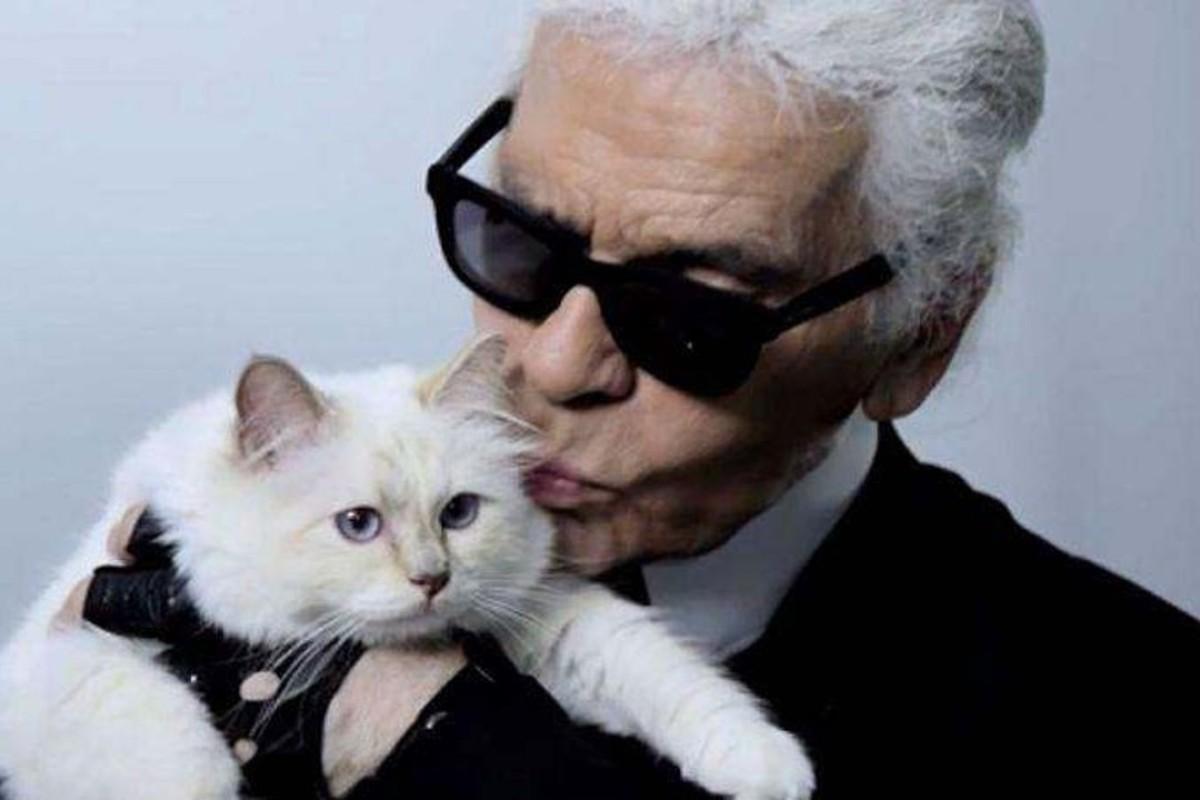 Choupette — Karl Lagerfeld's cat