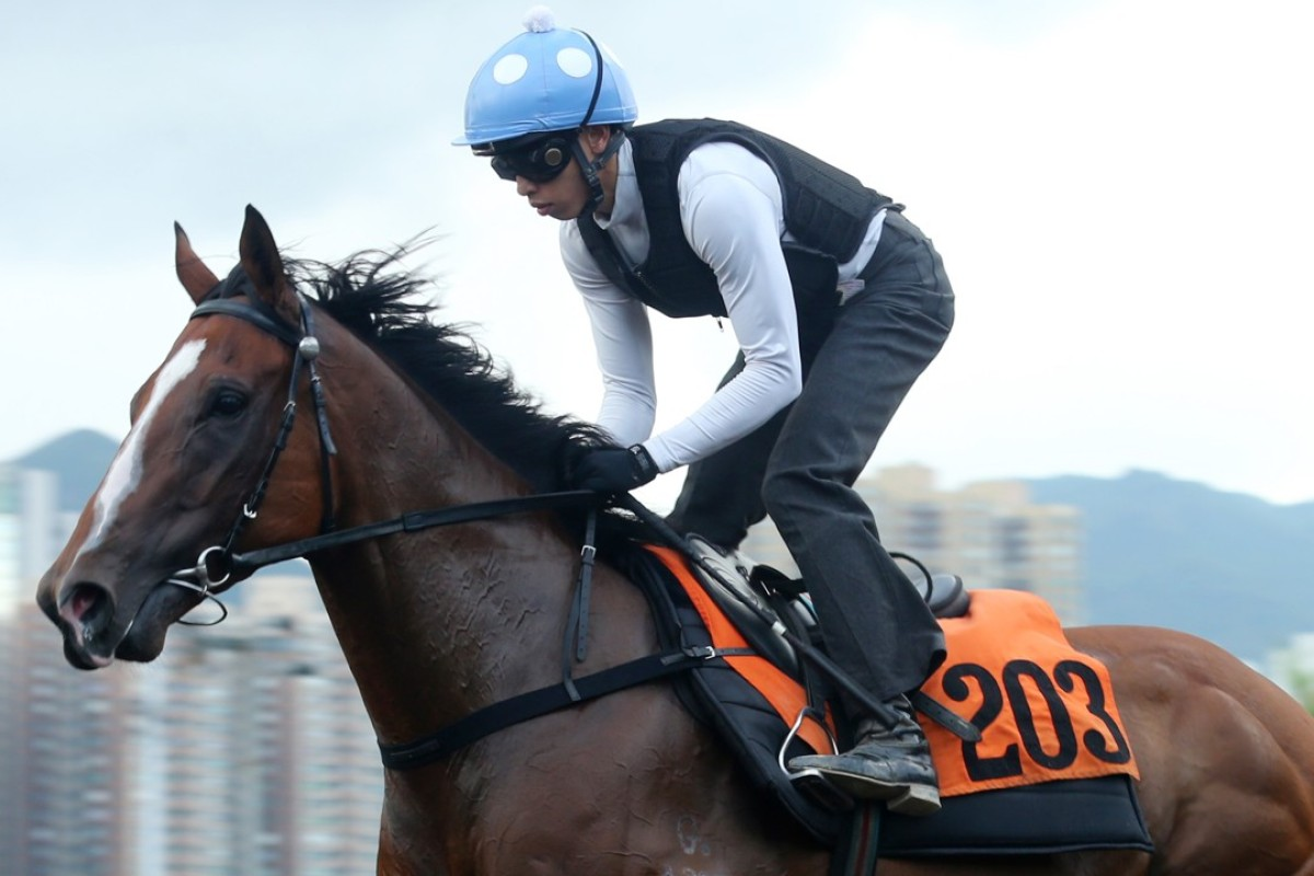 Vincent Ho rides Ho Ho Horse at trackwork. Photo: Kenneth Chan
