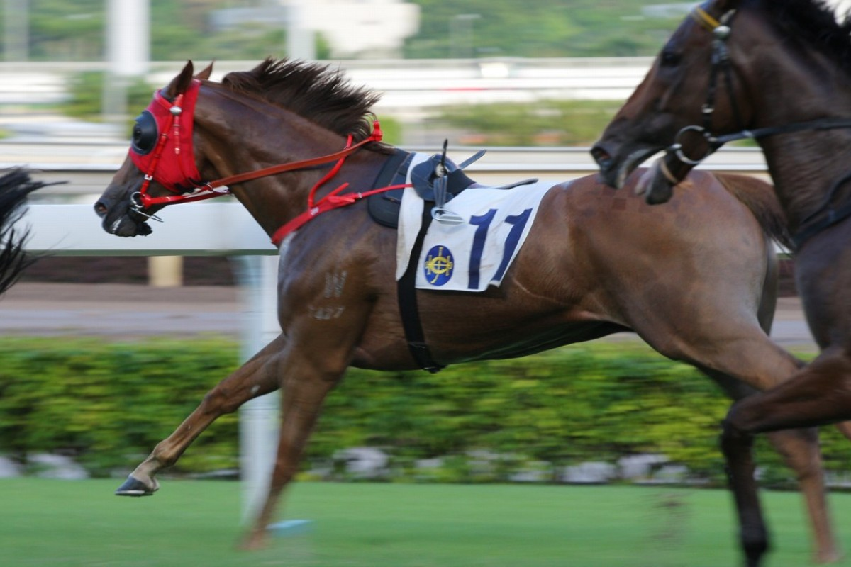 G-One Lover continues on after losing rider Alex Lai at Sha Tin on Sunday. Photos: Kenneth Chan