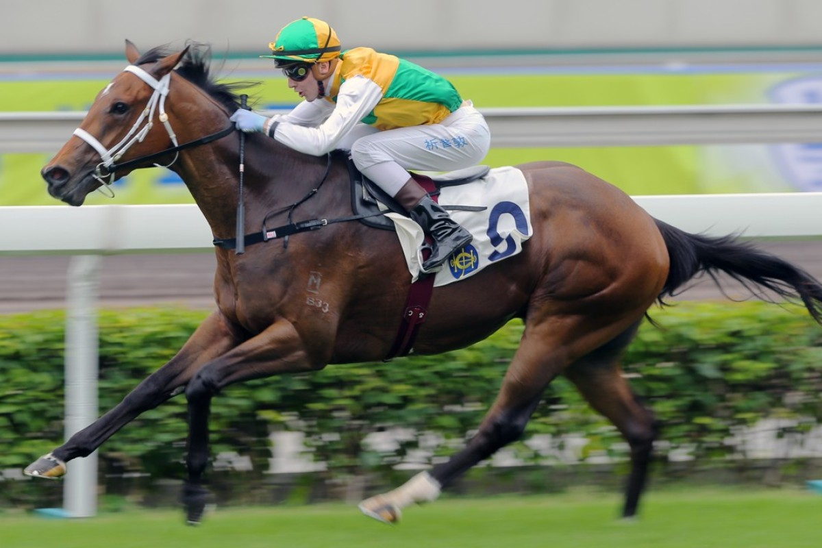 Southern Hemisphere-born Sparkling Dragon (Sam Clipperton) makes an impressive debut for freshman trainer Michael Freedman at Sha Tin. Photos: Kenneth Chan