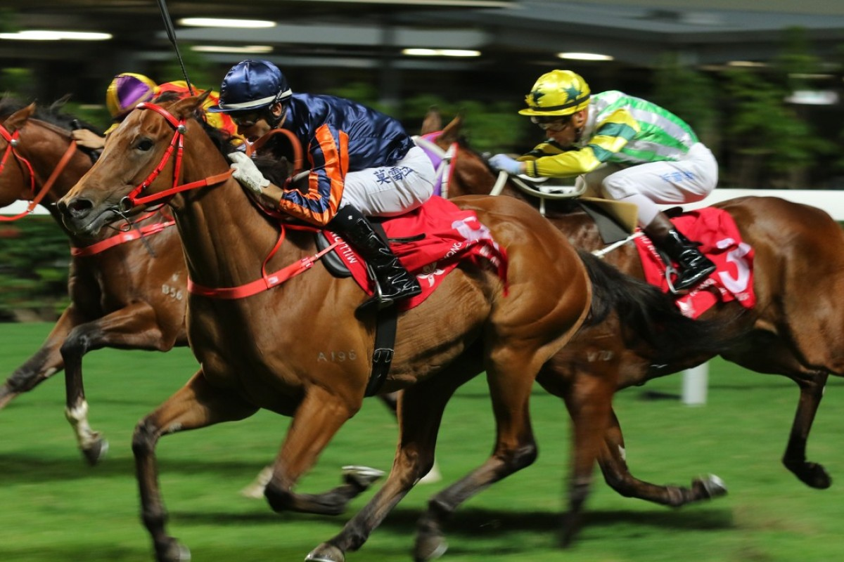 Affluence Star (left) finishes second to Sir Redlot (middle) on Wednesday night. Photo: Kenneth Chan