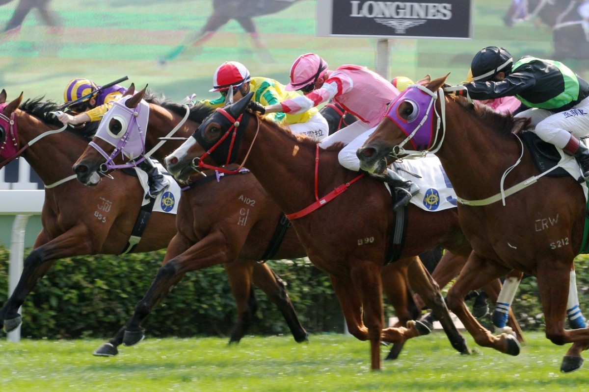 Storm Signal (left) gets overrun by Key Witness (right) at Sha Tin on Sunday. Photos: Kenneth Chan
