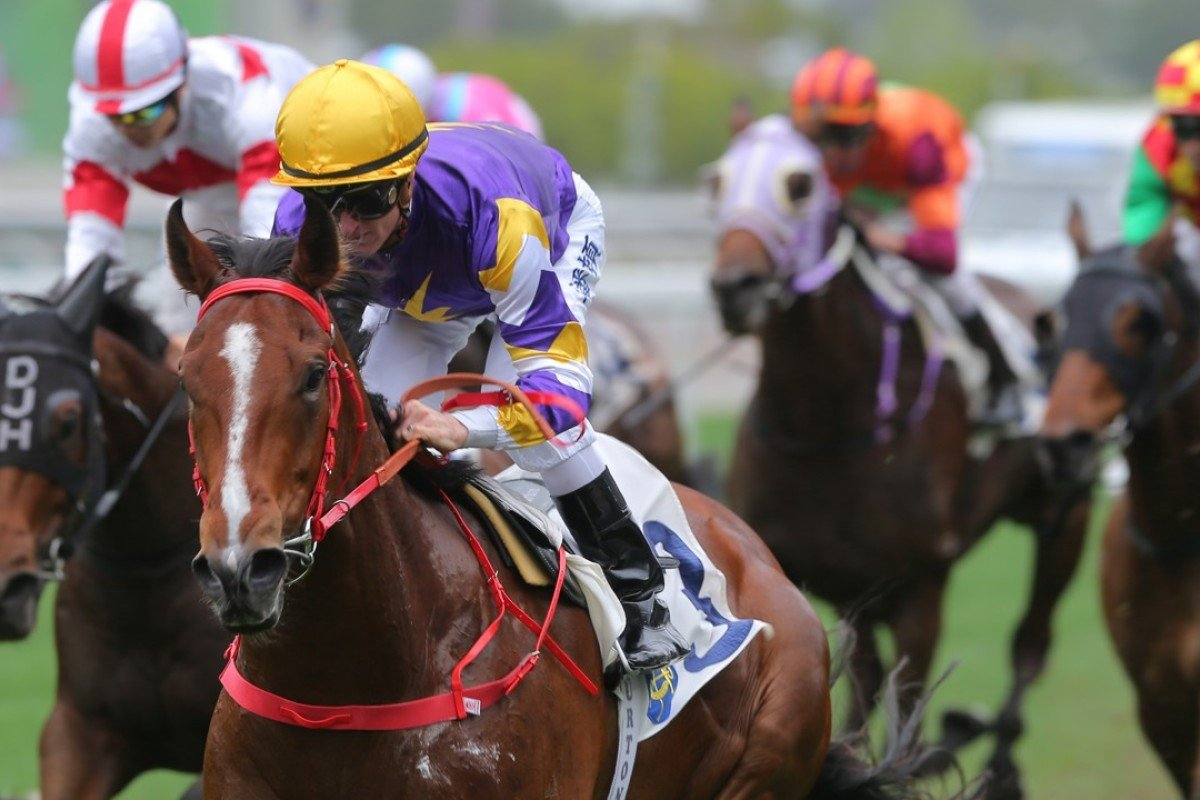 Zac Purton steers Golden Dash to a debut victory at Sha Tin. Photos: Kenneth Chan