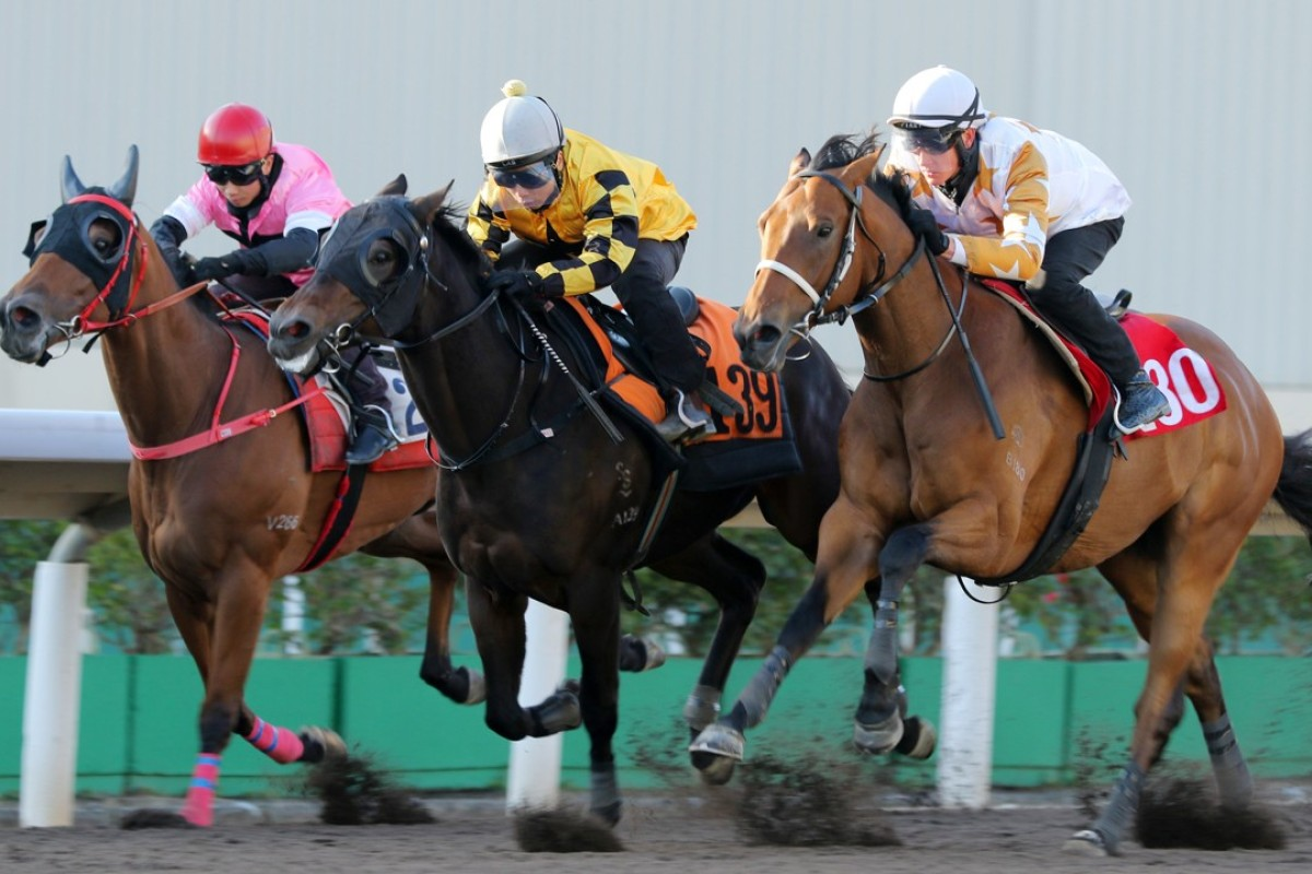Wishful Thinker (right) trials at Sha Tin on January 12. Photo: Kenneth Chan