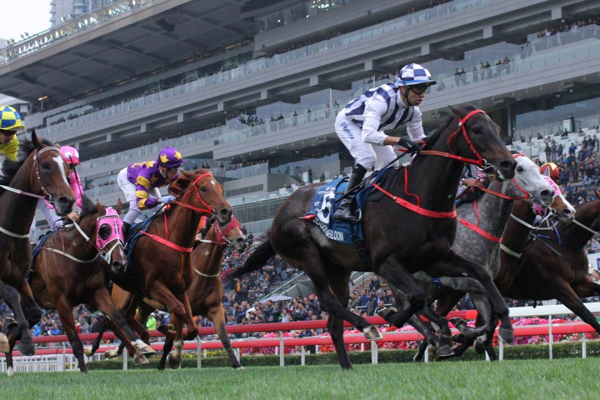 Joao Moreira guides Seasons Bloom to victory in the Group One Stewards' Cup. Photos: Kenneth Chan