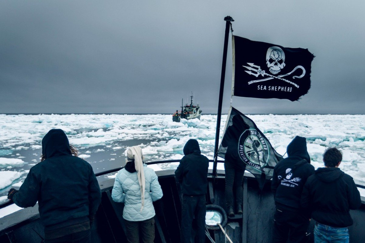 The crew of the Bob Barker watching from the bow as the ship moves through thick ice floes in pursuit of illegal fishing vessel Thunder in 2015. Picture: Simon Ager/Sea Shepherd