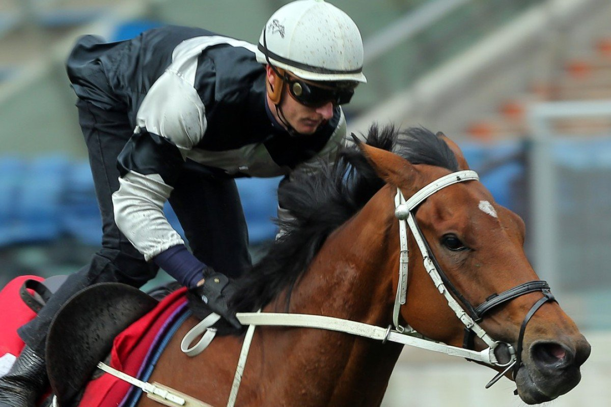 Exultant trials at Sha Tin for Zac Purton. Photos: Kenneth Chan.