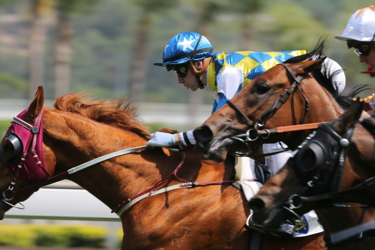 Sam Clipperton guides Solar Patch to victory on debut. Photos: Kenneth Chan