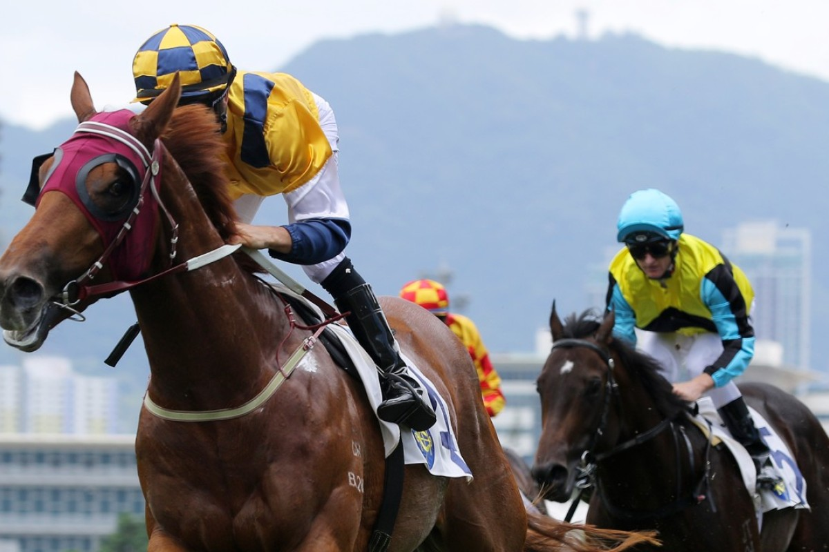 Joao Moreira guides Styling City to victory at Sha Tin on Sunday. Photo: Kenneth Chan