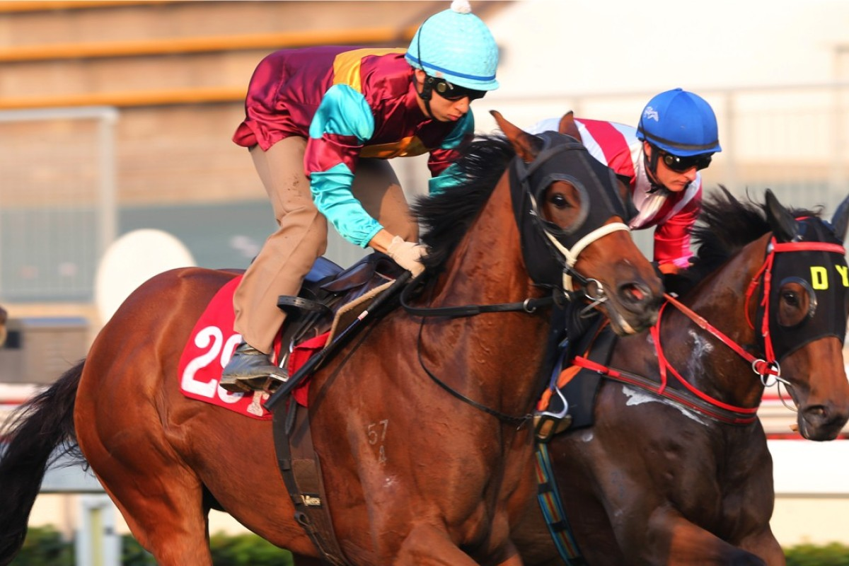 Matthew Chadwick (left) rides Victory Power in a trial at Sha Tin. Photo: Kenneth Chan