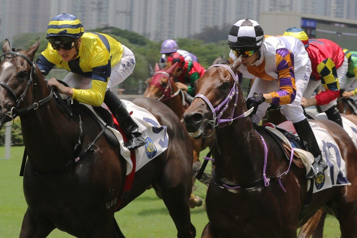 Shimmer And Shine (left) beats home Lunar Zephyr. Photo: Kenneth Chan
