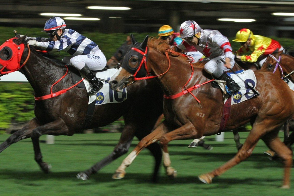 Split Of A Second (right) finishes second to Clear Choice at Happy Valley in April. Photos: Kenneth Chan