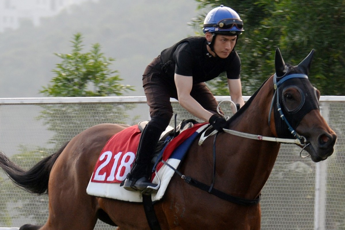 Sky Melody gallops on the Sha Tin turf on May 14. Photo: Kenneth Chan