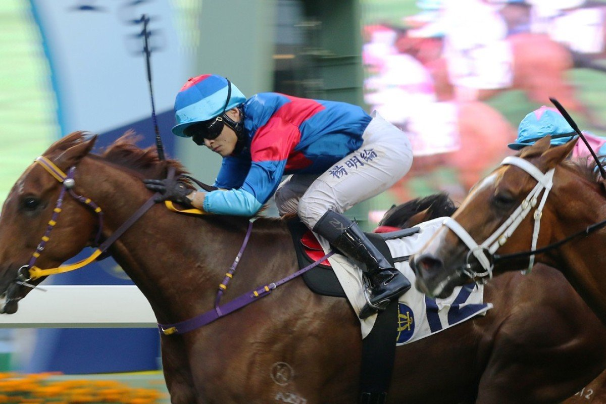 Keith Yeung drives Coby Boy to victory at Sha Tin. Photos: Kenneth Chan