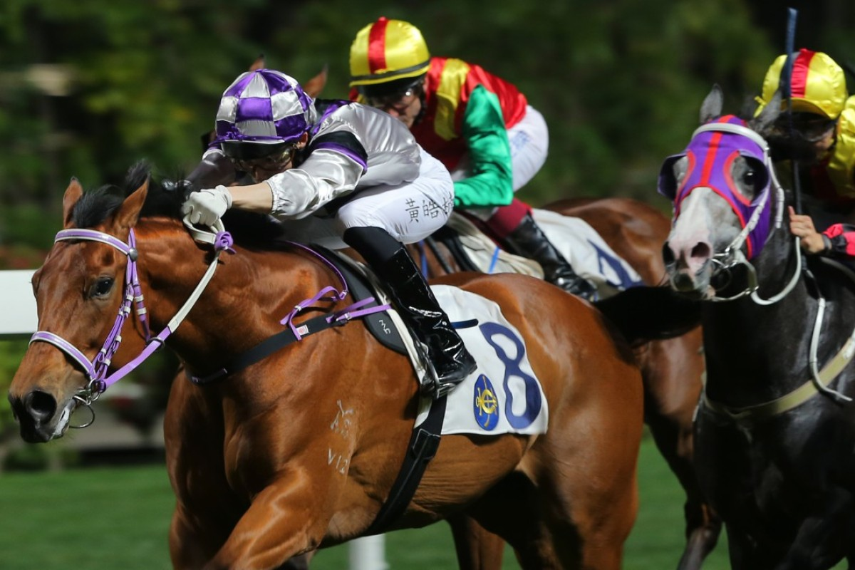 Prince Harmony wins at Happy Valley in March. Photos: Kenneth Chan