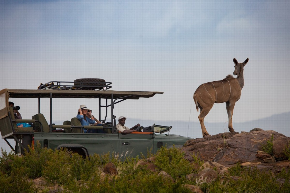 A game drive in the Loisaba Conservancy in Kenya's Laikipia county. Pictures: courtesy of Loisaba Conservancy