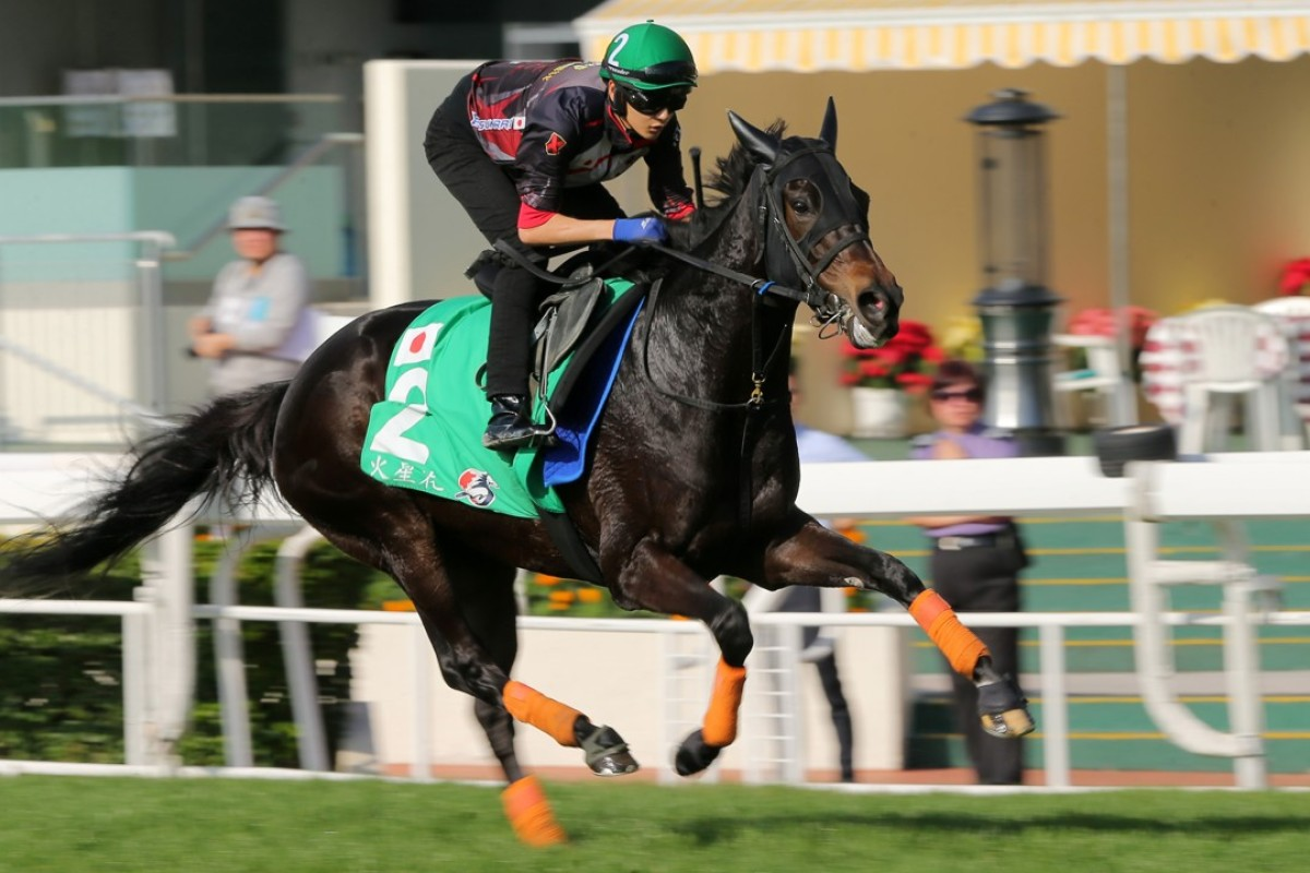 Hong Kong Vase runner Crocosmia gallops at Sha Tin on Tuesday. Photos: Kenneth Chan