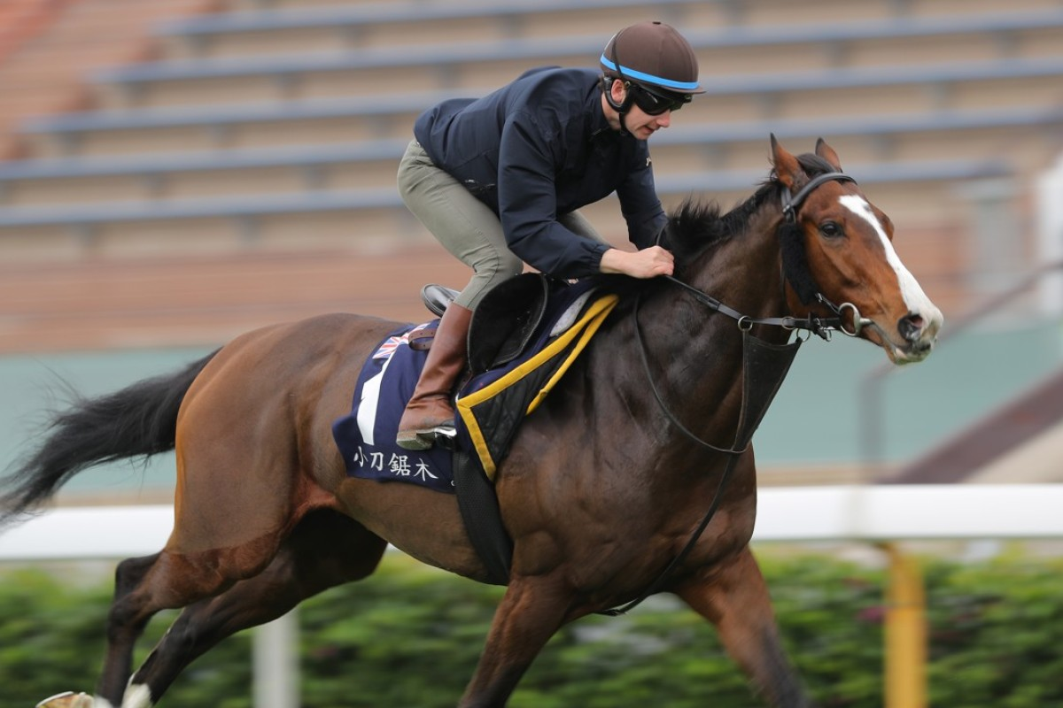 Oisin Murphy gallops Beat The Bank in trackwork at Sha Tin ahead of the Hong Kong Mile on Sunday. Photos: Kenneth Chan