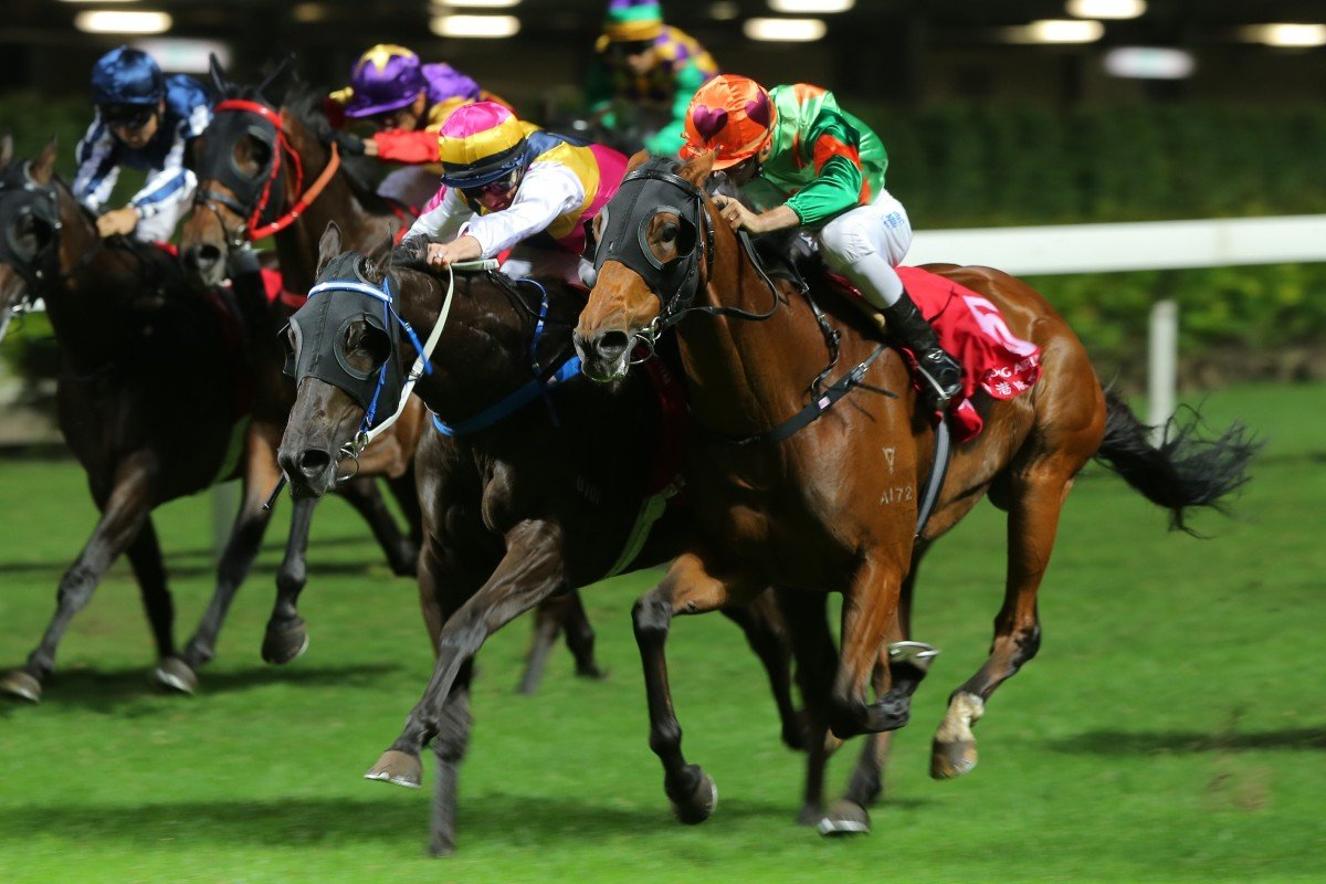 Rule Thee (right) flashes home to win at Happy Valley this season. Photos: Kenneth Chan