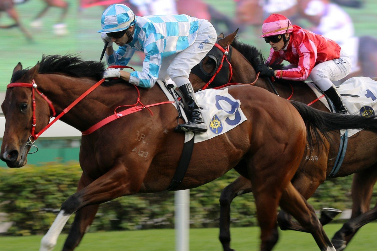 Short-priced favourite Conte races clear to win at Sha Tin on Tuesday. Photos: Kenneth Chan