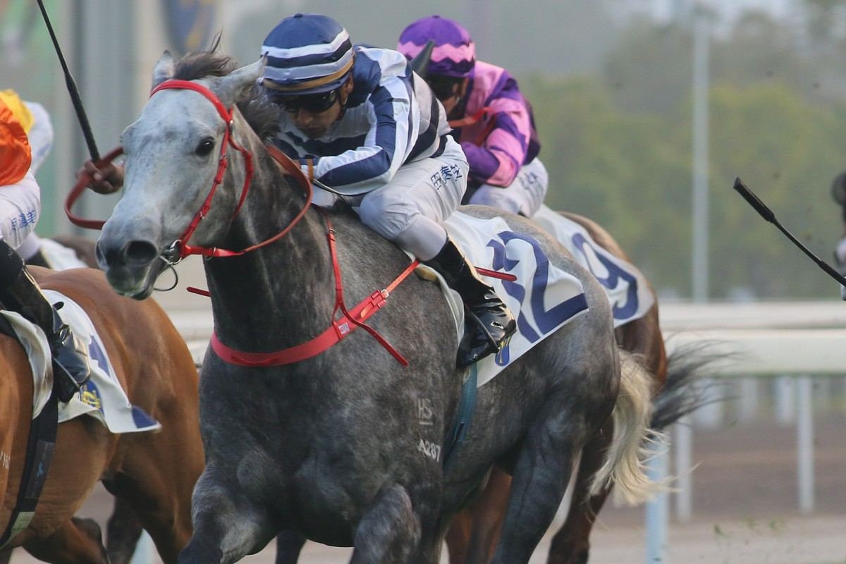 Fifty Fifty wins at Sha Tin in January last year. Photos: Kenneth Chan