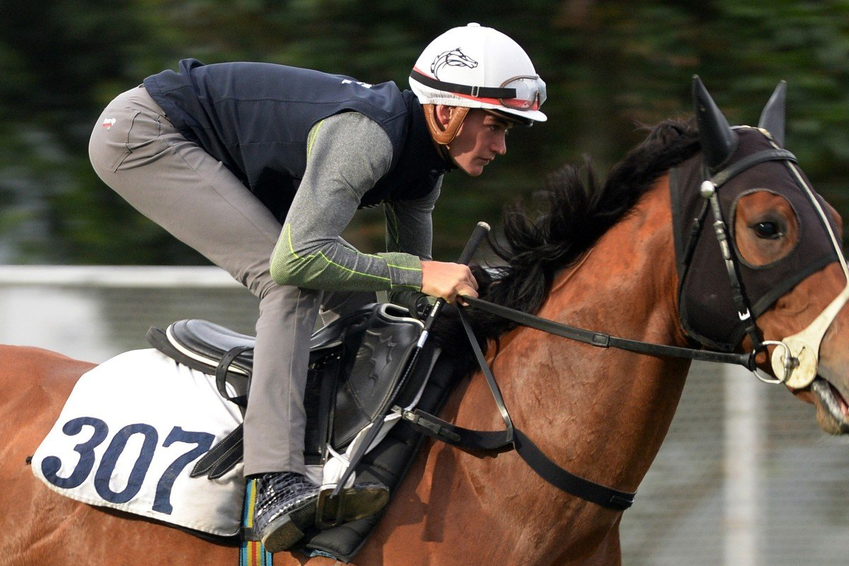 Regan Bayliss rides Sea Jade in trackwork at Sha Tin this week. Photo: Kenneth Chan