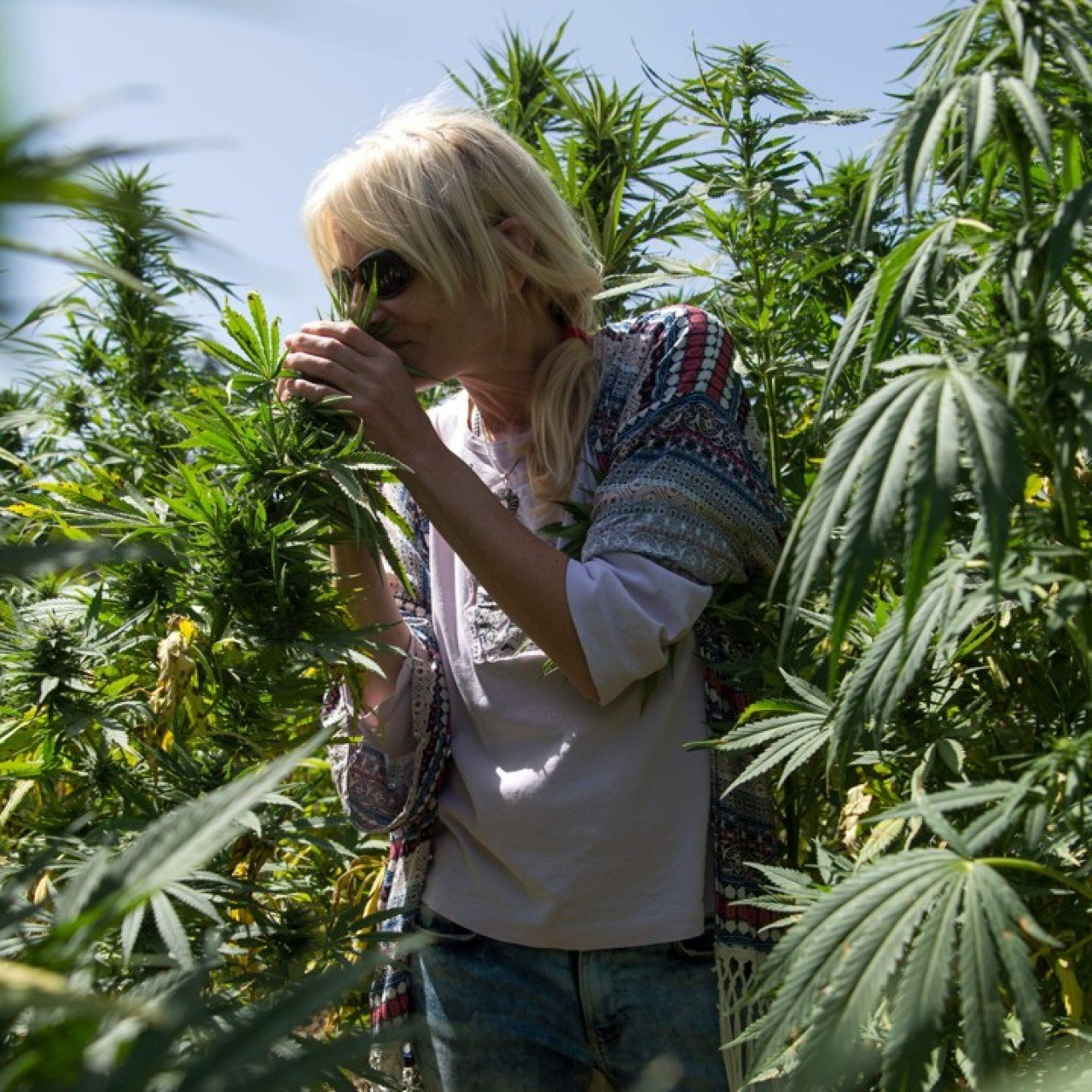 High times: Morocco's growing number of cannabis tourists